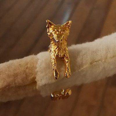 anillo perro Border Collie